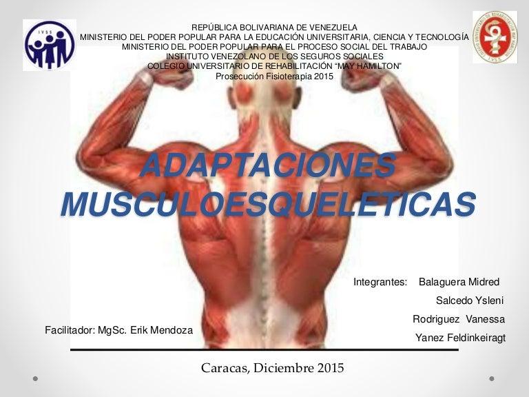 huso muscular y organo tendinoso de golgi slideshare