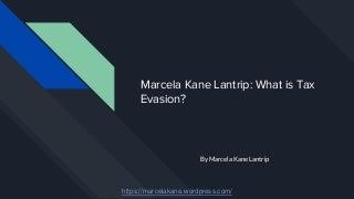 Marcela kane lantrip what is tax evasion