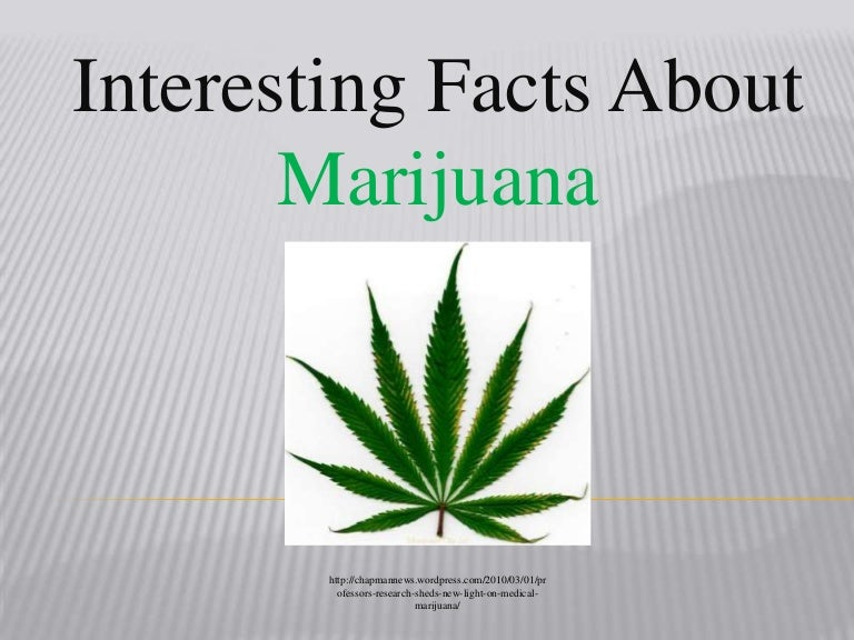 marijuana facts presentation
