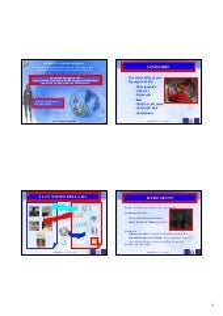 Master itals 2 liv iv ciclo presentazione tesi_dell'aria c.