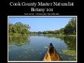 Master Naturalist Botany Cook County