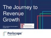 The Journey to Revenue Growth