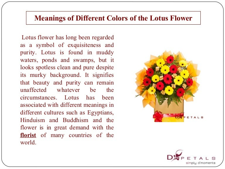 Meaningsofdifferentcolorsofthelotusflower 150216234757 Conversion Gate01 Thumbnail 4gcb1424152102