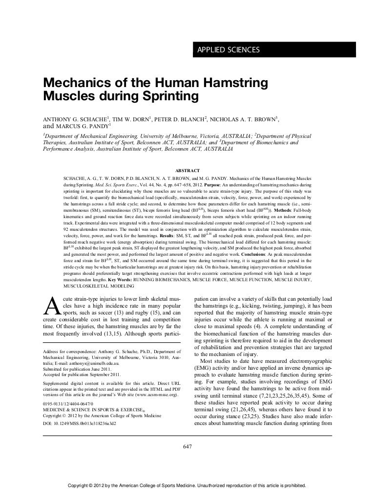 mechanics of the human hamstring muscles during sprinting, Muscles