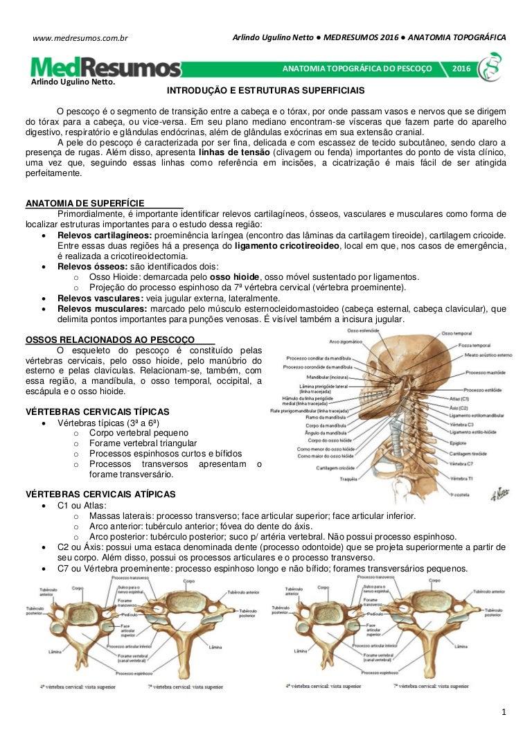 Medresumos 2016 Anatomia Topográfica Pescoço
