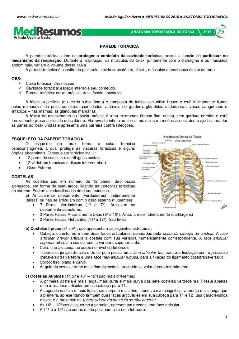 Medresumos 2016 anatomia topográfica - tórax