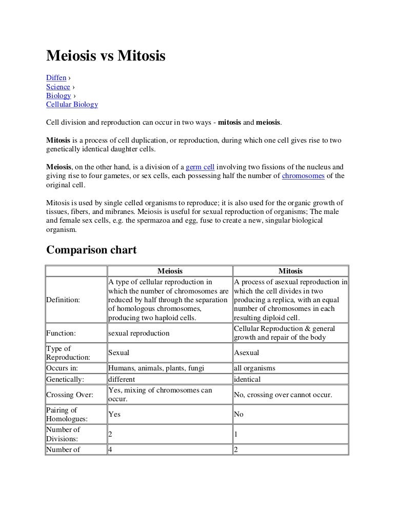 Comparing Mitosis And Meiosis Worksheet Answers Mitosis Vs Meiosis
