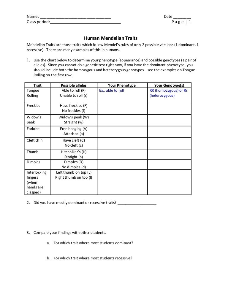 Mendelian Traits Activity – Dominant and Recessive Traits Worksheet