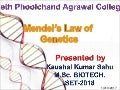 Mendel's law of genetics KAUHSAL KUMAR SAHU
