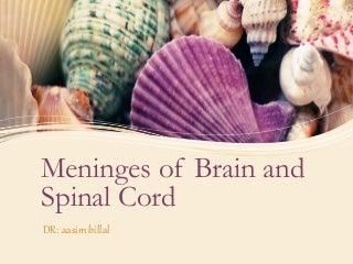 'meninges' on SlideShare