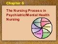 Mental Health Ch06 Nursing Process9 06