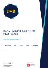 MBA Digital Marketing & Business - EFAP - FULL TIME
