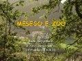 Mesego E Zoo