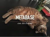 Metabase avec des chatons