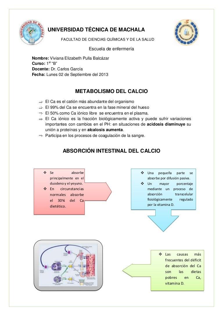 Hormona que controla el metabolismo