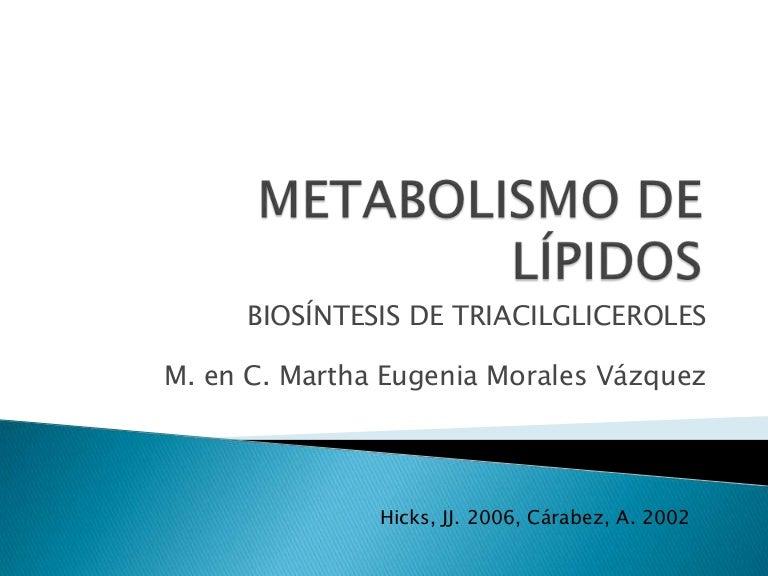 Metabolismo de lípidos cetogenesis y triglicéridos