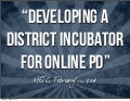 DEVELOPING A DISTRICT INCUBATOR FOR ONLINE PD - METC 2014