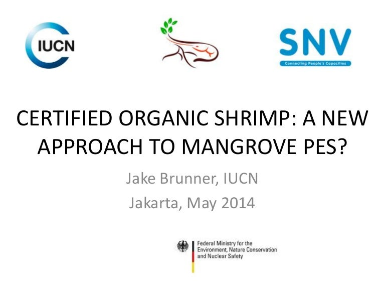 Certified Organic Shrimp A New Approach To Mangrove Pes