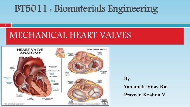 Mechanical Heart Valves