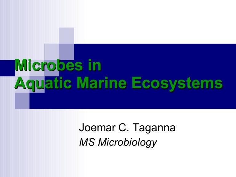 Microbiology of Oceans and Estuaries