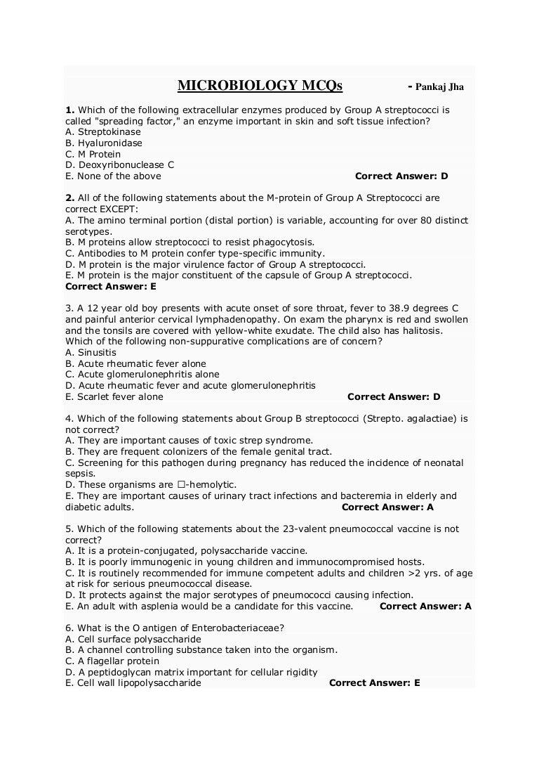 sample report essay english