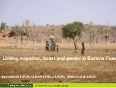 Linking migration, forest and gender in Burkina Faso