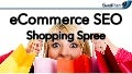 eCommerce SEO Shopping Spree - State of Search 2013