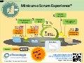 Scrum Experience