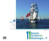 11 Reasons to invest in Montenegro 2010