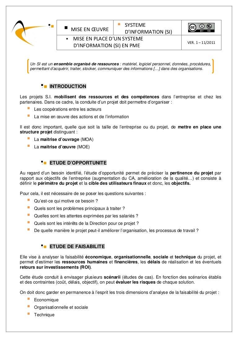Entreprise Maitrise D Oeuvre mise en place d'un systéme d'information (si) en pme