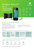 Infographic: Mobile Wallet