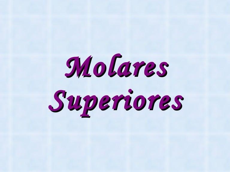 Molares Superiores 1