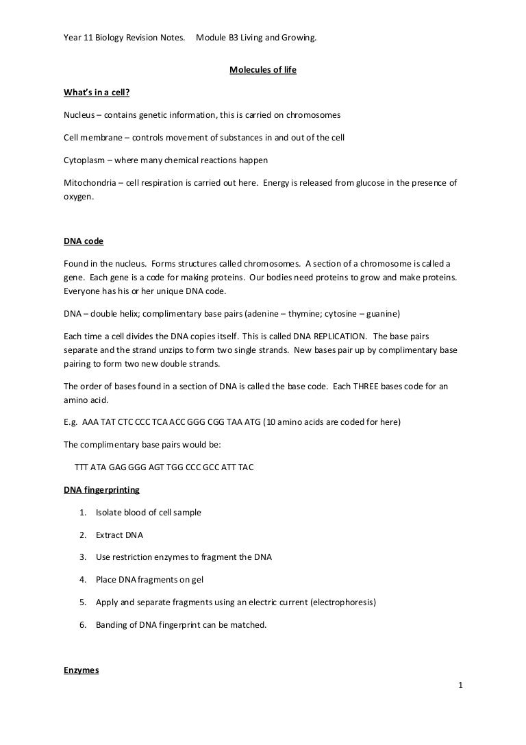 Worksheets Dna The Double Helix Worksheet Answers b3 ocr gcse