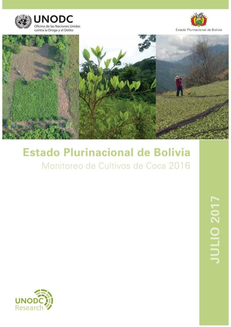Informe De Monitoreo De Cultivos De Coca En Bolivia 2016