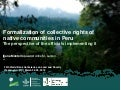 Formalization of collective rights of native communities in Peru, the perspective of the officials implementing it