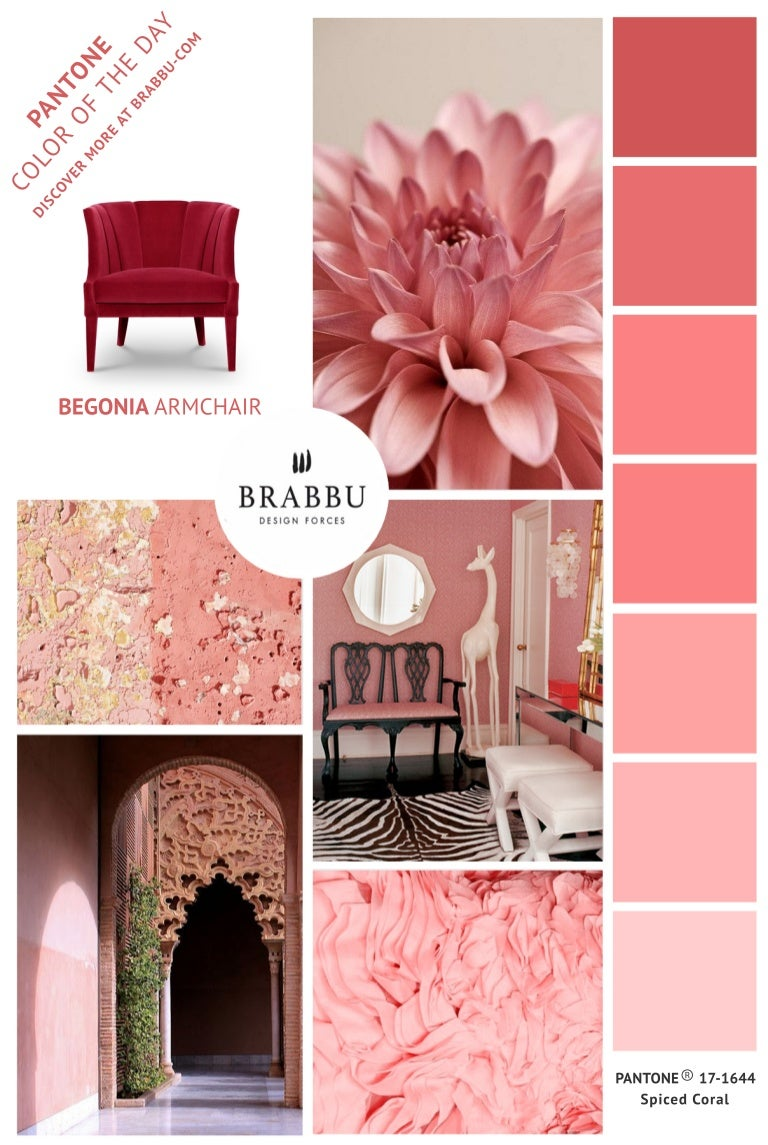 Pantone Color Of The Day Spice Coral