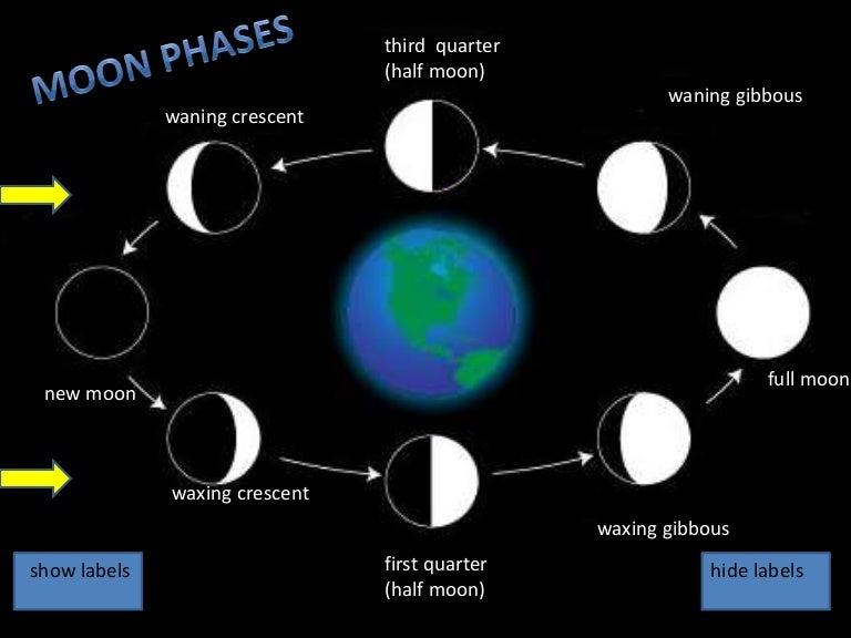 Moon phases labels pp