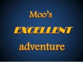 Moo's excellent adventure - How our cat spent his summer vacation - Funny