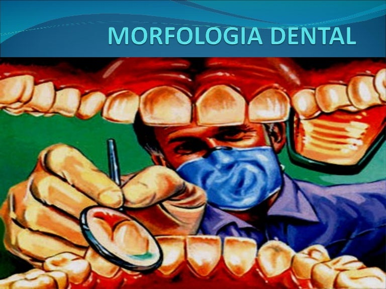 Morfologia Dental Generalidades
