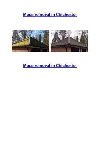 Moss removal services in the Chichester area