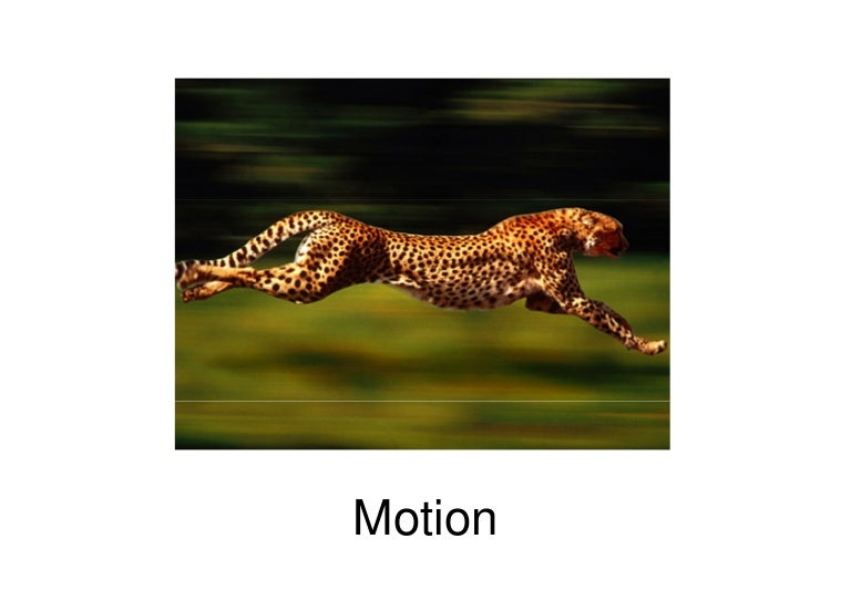 Motion speed velocity_ ppt.