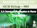 IGCSE Biology - Chemical Coordination in Plants