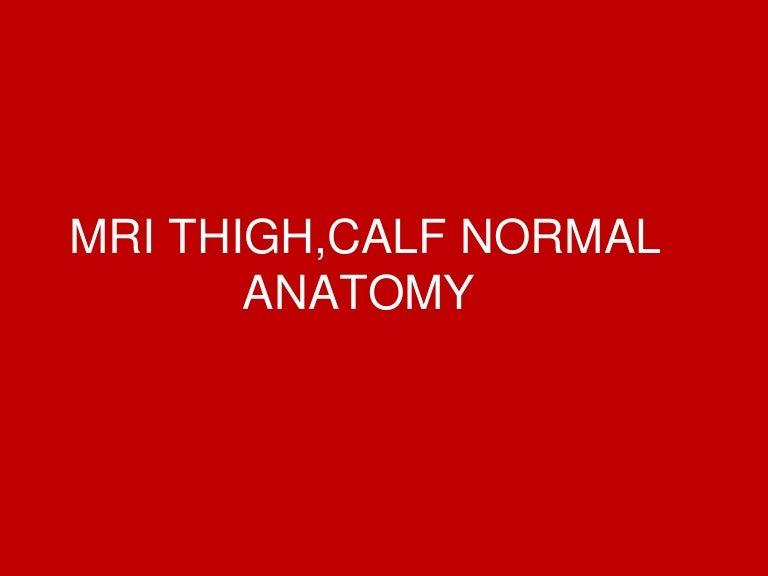 Mri Thighleg Normal Anatomy Dr Ahmed Esawy