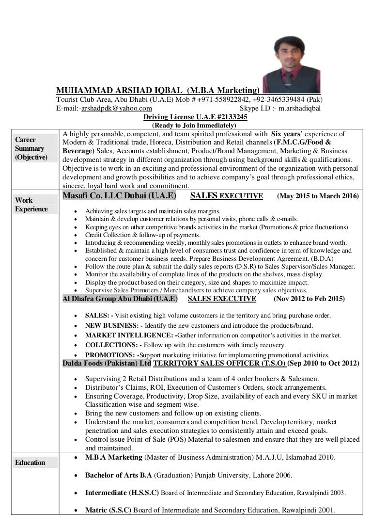 Colorful Insead Resume Book Pdf Model - Wordpress Themes Ideas ...