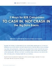 3 Ways for B2B Companies to Cash In Not Crash In the Big Data Boom