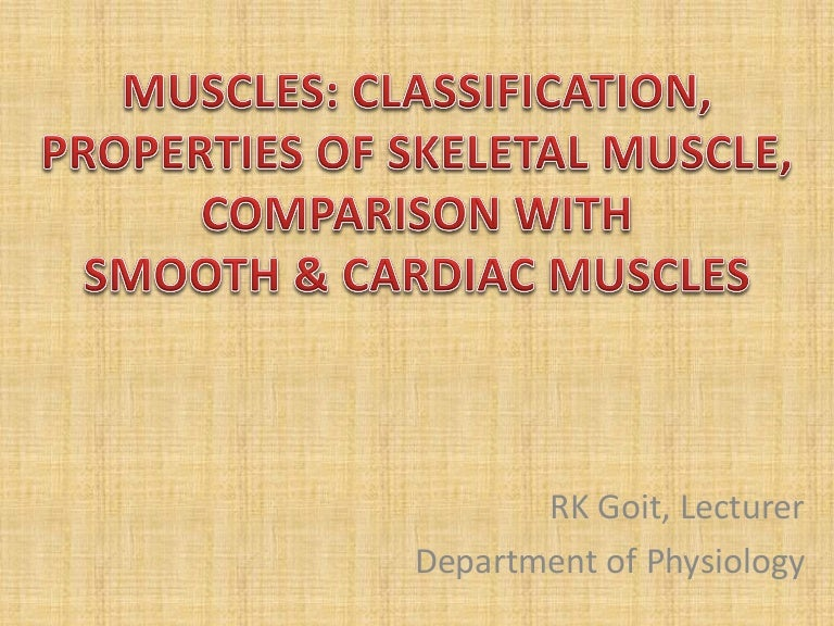 muscles classification, Muscles