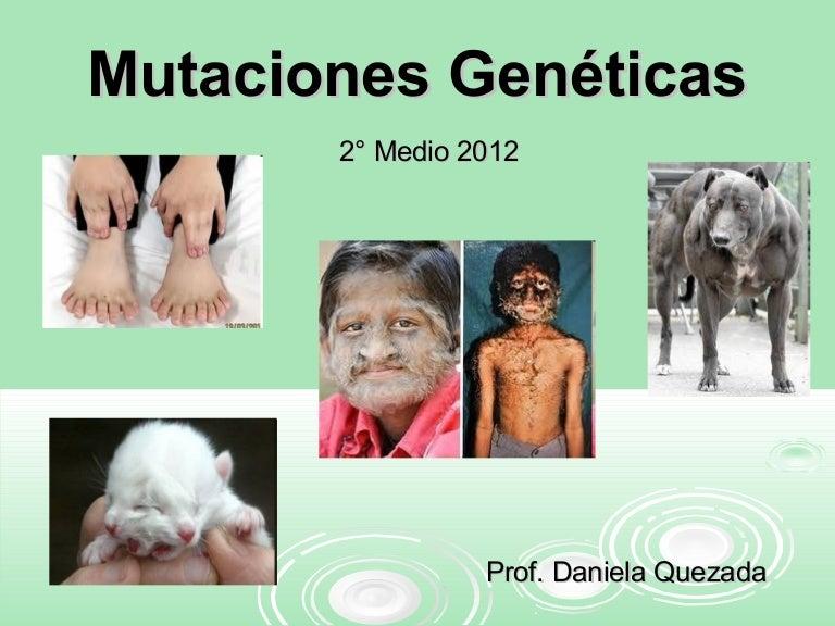 Mutaciones Genéticas 2 Medio