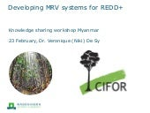 Developing MRV systems for REDD+