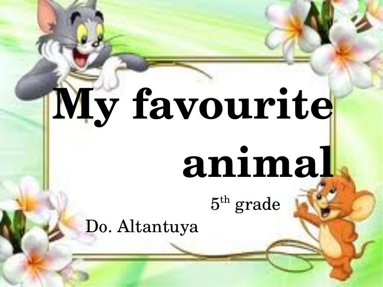 my favourite animal paragraph
