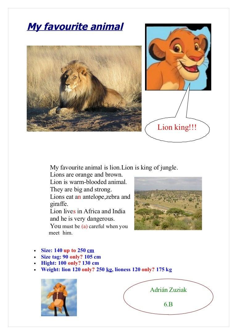 My favourite wild animal essay